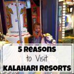 5 Reasons to Visit Kalahari Resorts in the Poconos