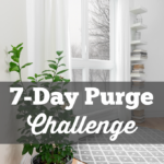 7-Day Purge Challenge {Day 3-Bathroom}