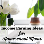Income Earning Ideas for Homeschool Moms